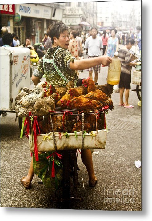Chickens In A Basket Metal Print featuring the photograph Chickens For Sale by Kabir Ghafari