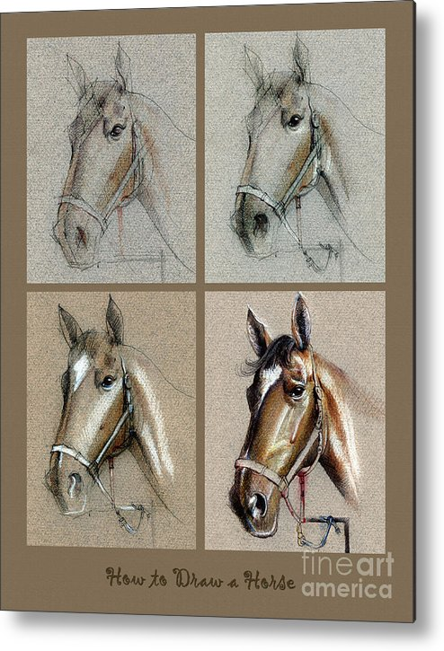 how to draw a horse portrait metal print by daliana pacuraru
