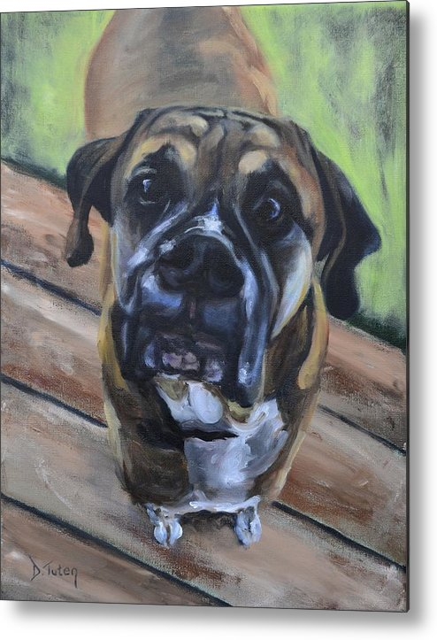 Boxer Metal Print featuring the painting Lugnut by Donna Tuten