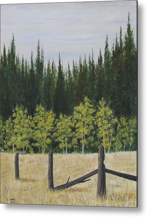 Landscape Metal Print featuring the painting Old Fences by Dana Carroll