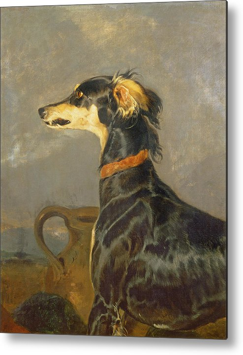 Pet Metal Print featuring the painting Queen Victorias Favourite Dog, Eos by Sir Edwin Landseer