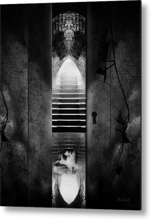 Asylum Metal Print featuring the photograph Soft Asylum by Bob Orsillo