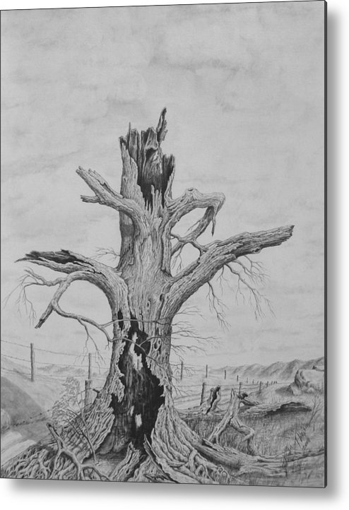 Realistic Drawing Metal Print featuring the drawing The Survivor by Dan Theisen