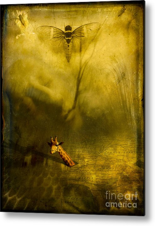 Giraffe Metal Print featuring the photograph Giraffe And The Heart Of Darkness by Paul Grand