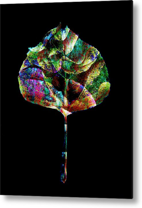 Leaf Metal Print featuring the photograph Jewel Tone Leaf by Ann Powell
