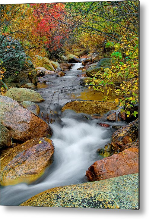 Water Scenics Metal Print featuring the photograph Rock Creek by Tim Reaves