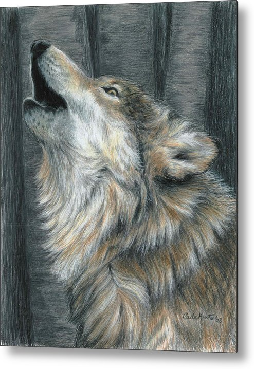 Wolf Metal Print featuring the drawing Howling Wolf by Carla Kurt