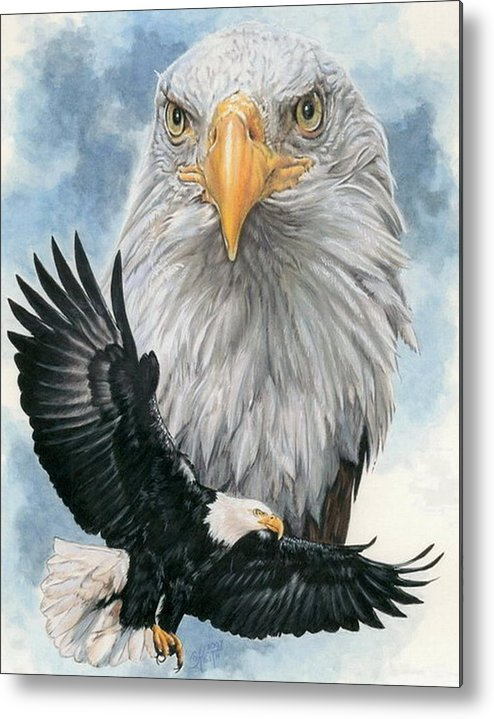 Bald Eagle Metal Print featuring the mixed media Peerless by Barbara Keith