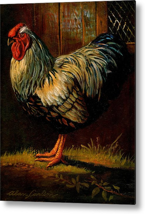 Poultry Metal Print featuring the painting Silver Wyandotte Large Fowl. by Alan Carlson
