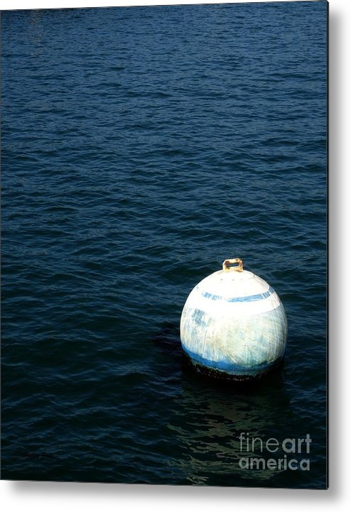 Seascape Metal Print featuring the photograph Sit And Bounce by Shelley Jones