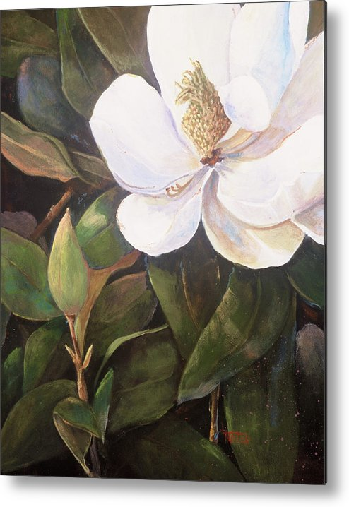 Floral Metal Print featuring the painting Southern Magnolia by Jimmie Trotter