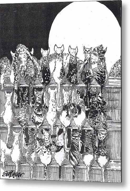 Cats Metal Print featuring the drawing Two Dozen And One Cats by Seth Weaver
