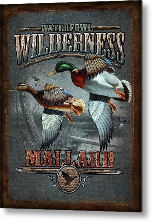 Bruce Miller Metal Print featuring the painting Wilderness Mallard by JQ Licensing