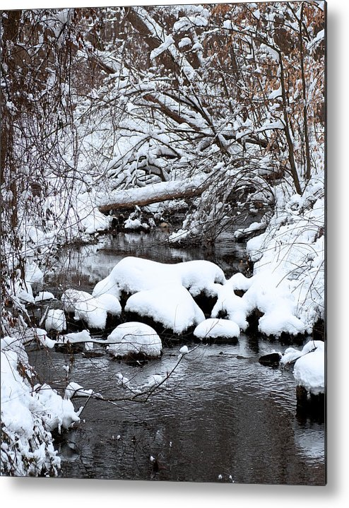 Woods Metal Print featuring the photograph Winters Crossing by Scott Wyatt