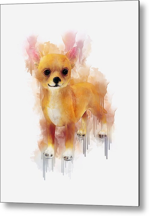 Chihuahua Metal Print featuring the digital art Chihuahua Art by Ian Mitchell