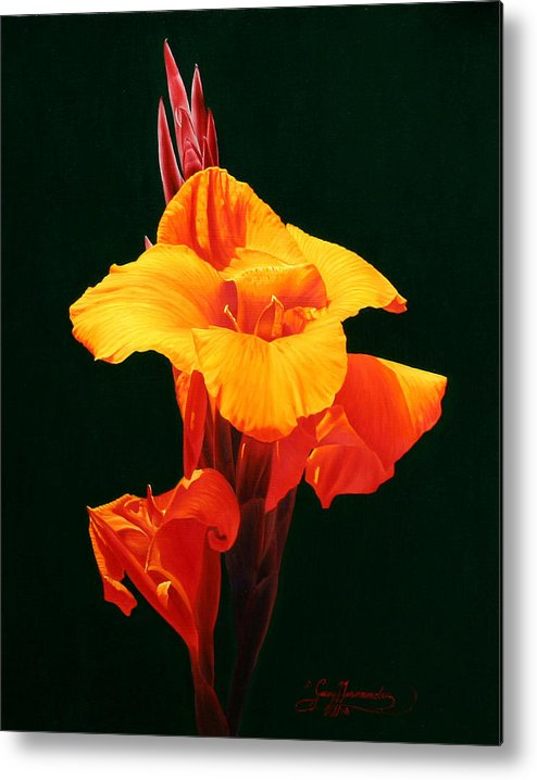 Floral Metal Print featuring the painting Orange Canna by Gary Hernandez