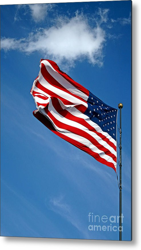 Us Flag Metal Print featuring the photograph Flying High 4 by Earl Johnson
