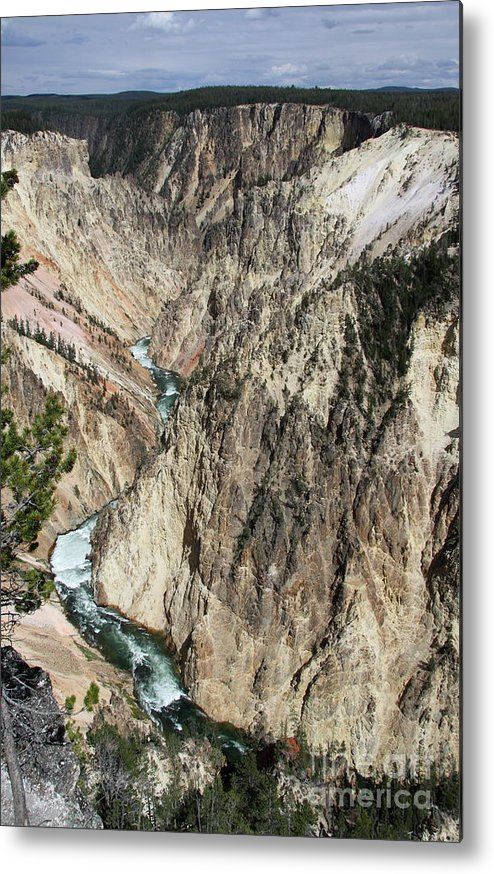 Lower Falls Metal Print featuring the photograph Yellowstone River From Artist Point by Christiane Schulze Art And Photography