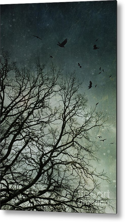 Atmosphere Metal Print featuring the photograph Flock Of Birds Flying Over Bare Wintery Trees by Sandra Cunningham