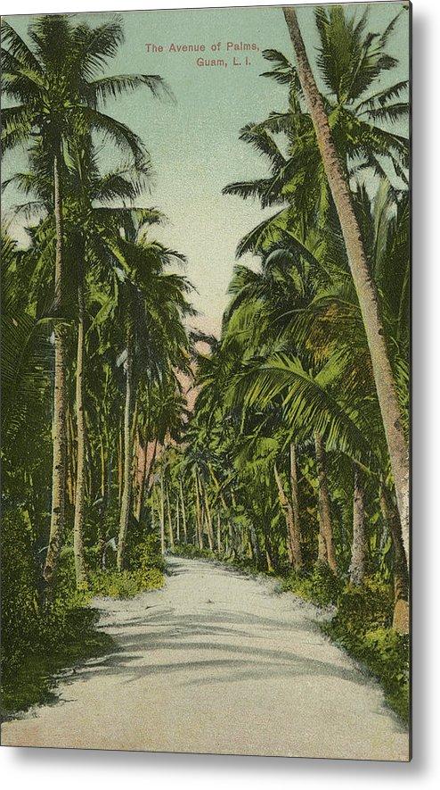 Guam Metal Print featuring the photograph The Avenue Of Palms Guam Li by eGuam Photo
