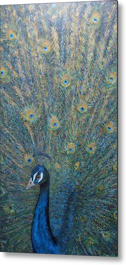 Nature Bird Peacock Metal Print featuring the painting Cocky by Sally Van Driest