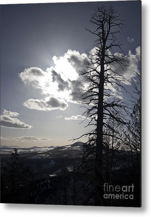 Richard Smukler Photography Metal Print featuring the photograph Bryce Canyon National Park by Richard Smukler