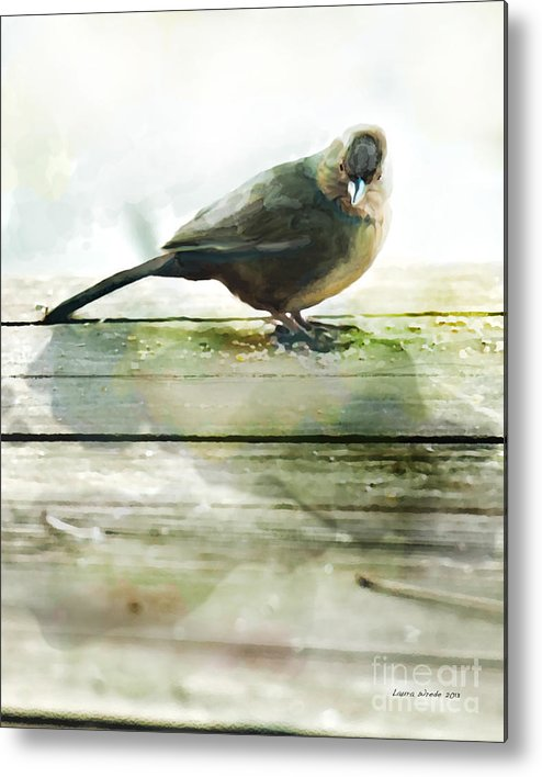 Bird Images Metal Print featuring the painting Bird On The Deck by Artist and Photographer Laura Wrede