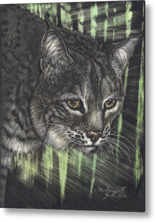 Bobcat Metal Print featuring the painting Bobcat Watching by Stephanie Ford