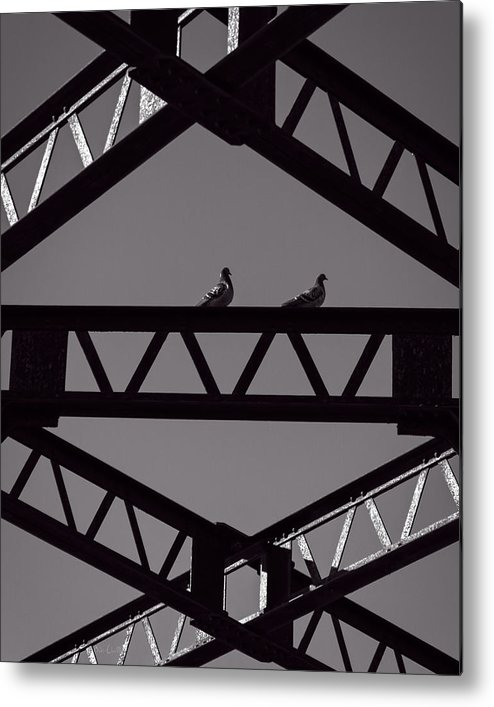 Pigeon Metal Print featuring the photograph Bridge Abstract by Bob Orsillo