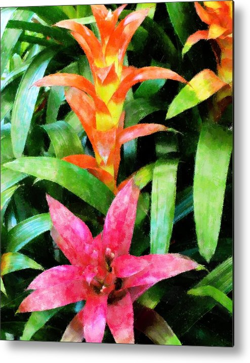 Nature Metal Print featuring the mixed media Bromalaid Beauties by Florene Welebny