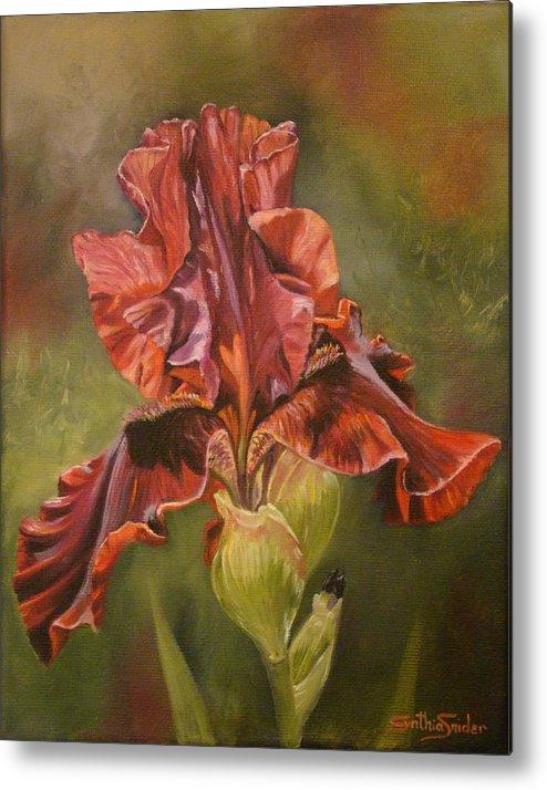 Iris Metal Print featuring the painting Burgundy Iris by Cynthia Snider