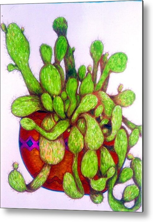 Original Art Metal Print featuring the drawing Cactus by Rae Chichilnitsky