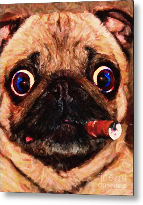 Animal Metal Print featuring the photograph Cigar Puffing Pug - Painterly by Wingsdomain Art and Photography