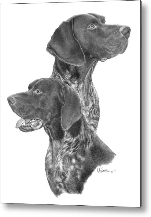 Pencil Drawing Print Metal Print featuring the drawing German Short-hair Pointer by Joe Olivares