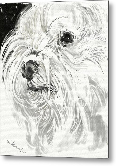 Maltese Metal Print featuring the jewelry Harley The Maltese by Linda Minkowski