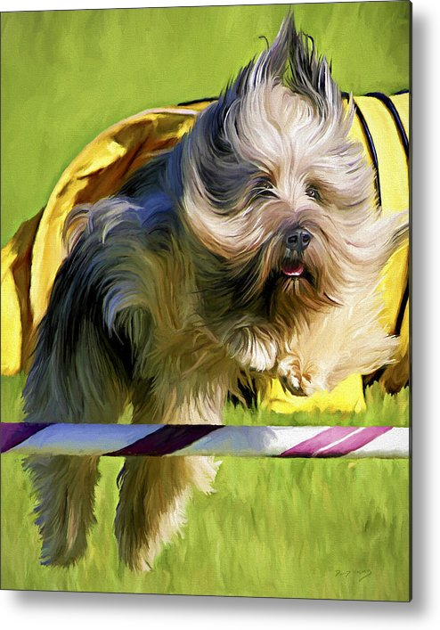 Silky Terrier Metal Print featuring the painting High Flier by David Wagner