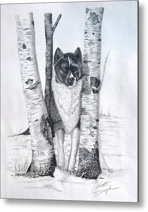 Dog Prints Metal Print featuring the drawing Ihasa In The Woods by Joette Snyder