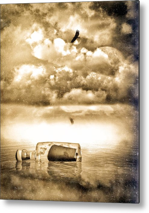 Seascape Metal Print featuring the photograph Message In A Bottle by Bob Orsillo