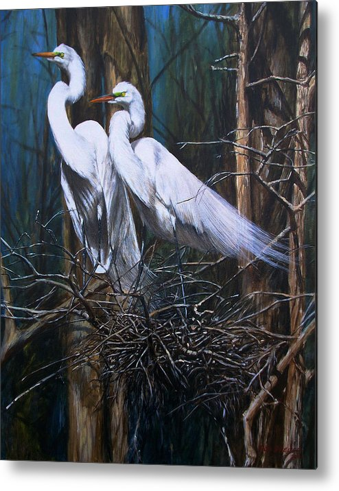 Snowy Metal Print featuring the painting Nesting Snowy Egrets by Dreyer Wildlife Print Collections