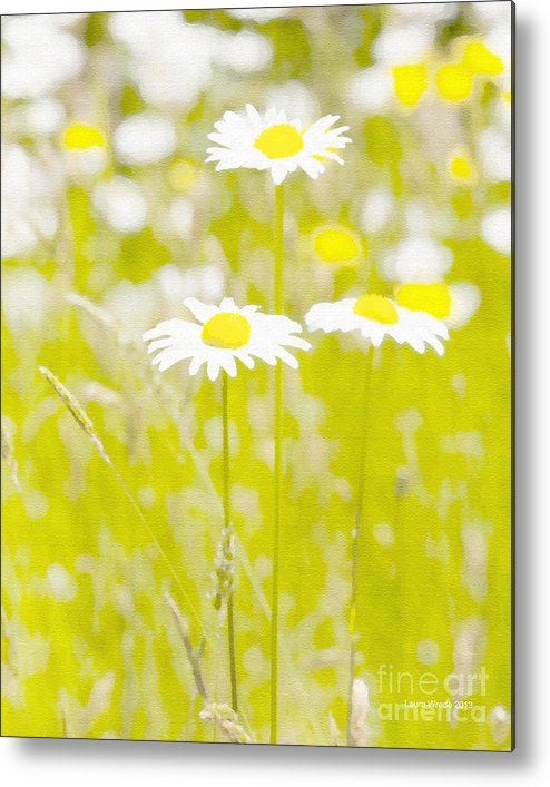 Daisy Metal Print featuring the painting Oopsy Daisy by Artist and Photographer Laura Wrede