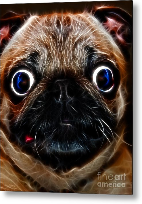 Animal Metal Print featuring the photograph Pug Dog - Electric by Wingsdomain Art and Photography