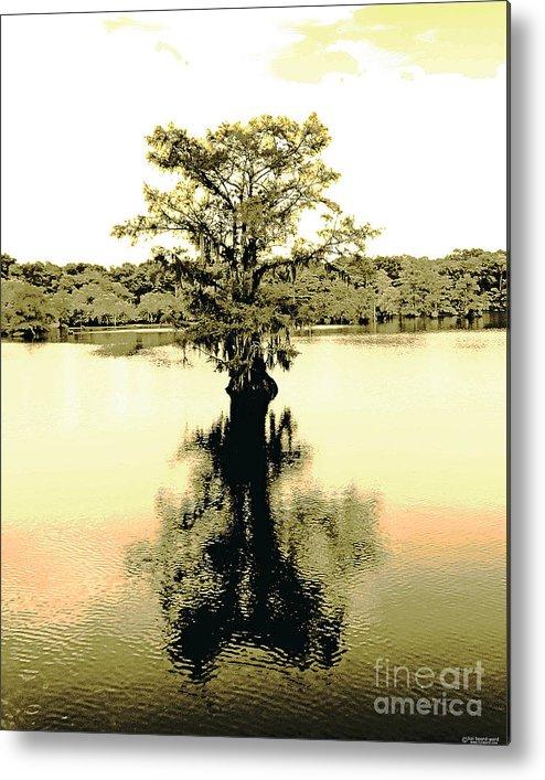 Cypress Metal Print featuring the digital art Sepia Cypress Chicot Sp Louisiana by Lizi Beard-Ward