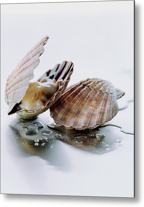 Cooking Metal Print featuring the photograph Two Scallops by Romulo Yanes