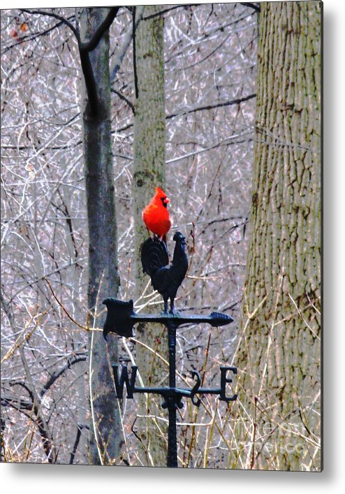 Weathervane Metal Print featuring the photograph Facing East by Patricia Januszkiewicz