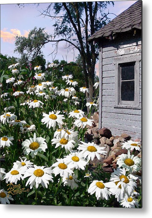 Daisies Metal Print featuring the painting Daises Delight II by Doug Kreuger