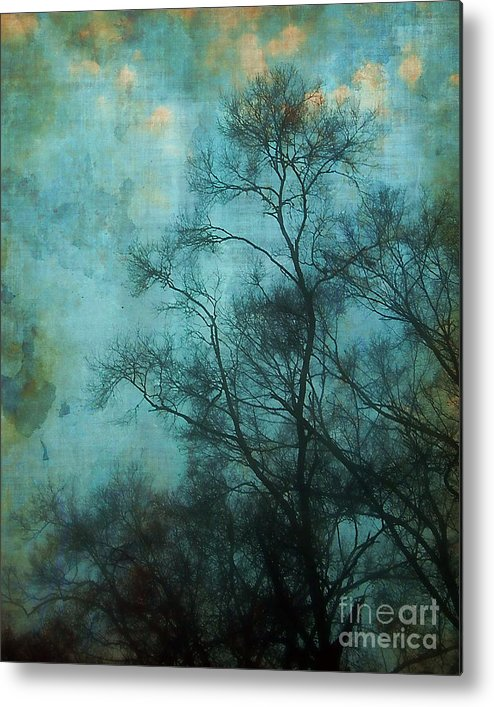 Aqua Metal Print featuring the photograph Evening Sky by Judi Bagwell