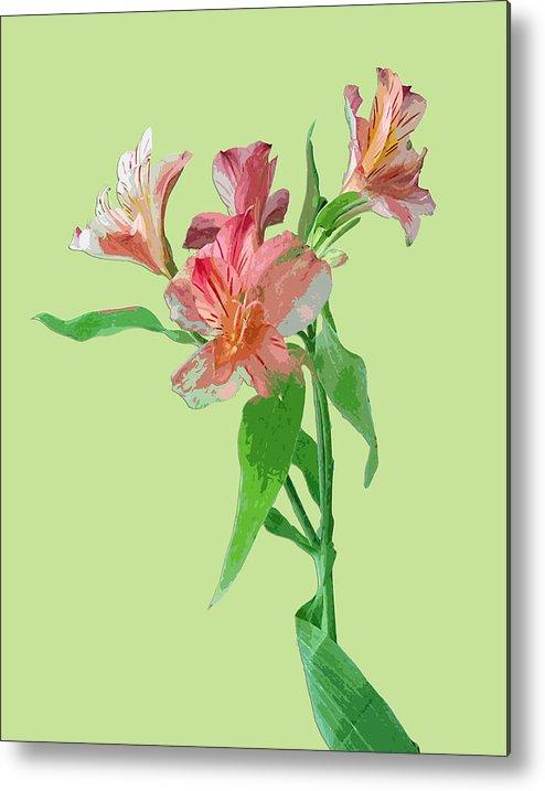 Flowers Metal Print featuring the digital art Stylish Florals by Karen Nicholson
