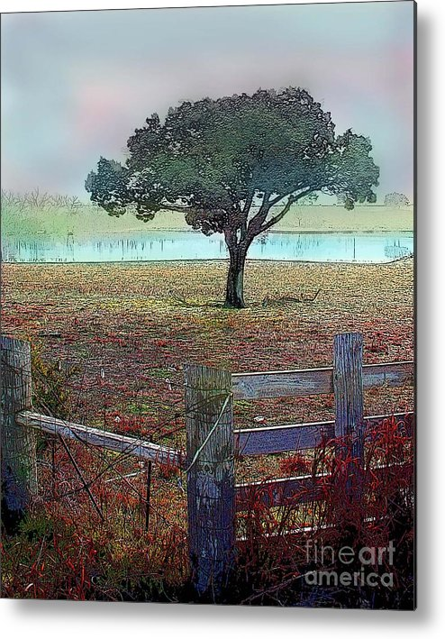Metal Print featuring the photograph Winter Fog by David Carter