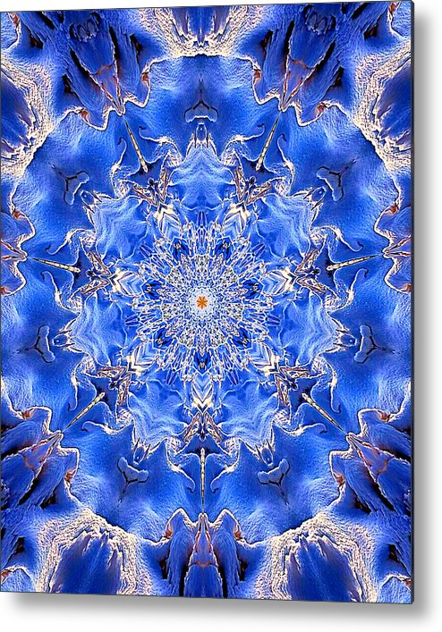 Colorful. Fine Art Metal Print featuring the photograph 018 by Phil Koch