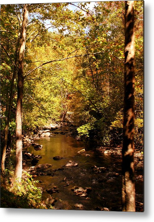Creek Metal Print featuring the photograph Autumn Creek by Kirby Larpenter